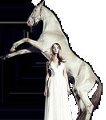 UNI.DE Free Email Pferd Bild